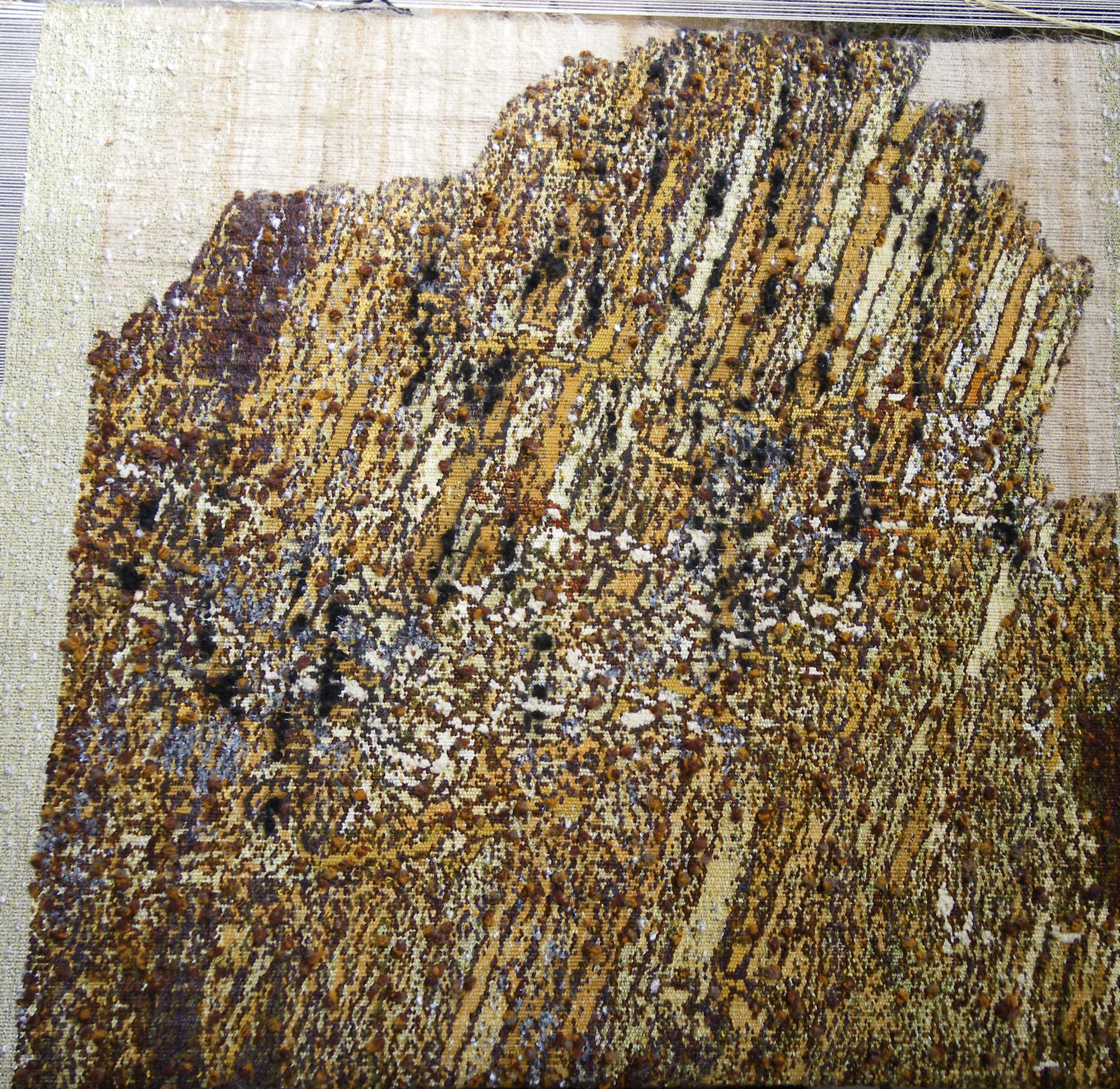 strates tapisserie haute lice 2016
